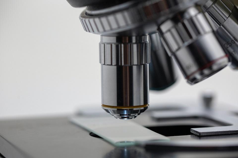 pathologoanatomiko-istopathologiko-tmima